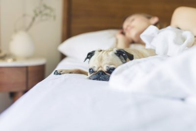 Sleep easy when you create a bedtime routine for adults.
