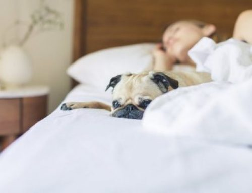 Bedtime routine for adults: Sleep soundly